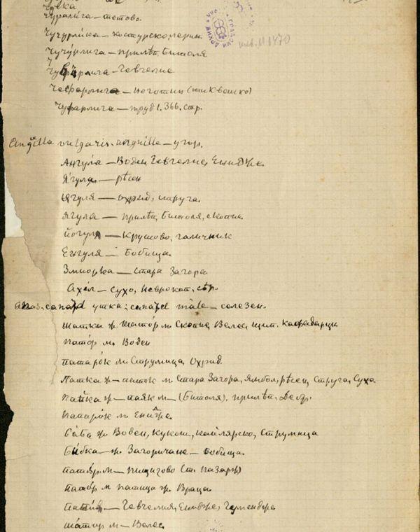 Материали за речник на българския език