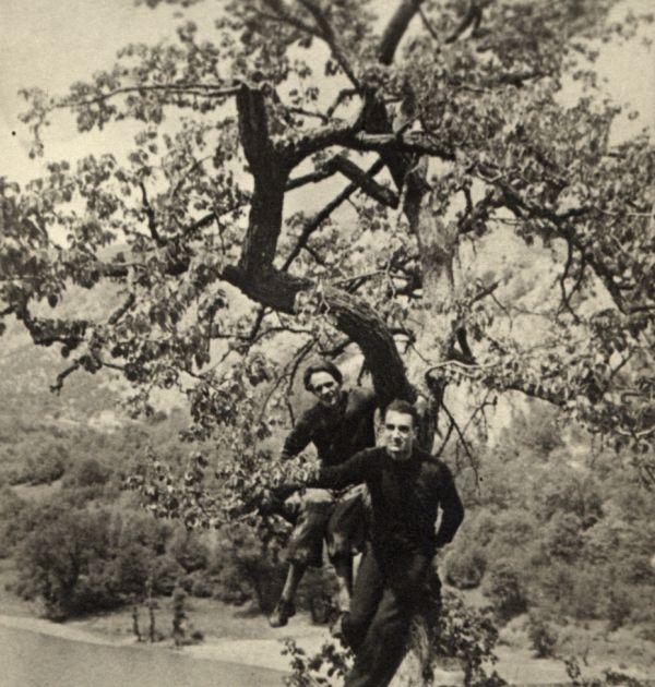 Никола Вапцаров с Бойка, Антон Попов и други на Черепишкия манастир, 1939 г. 1(3), Държател Институт за литература – БАН